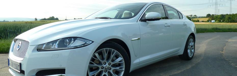 Jaguar XF, Foto: Autogefühl