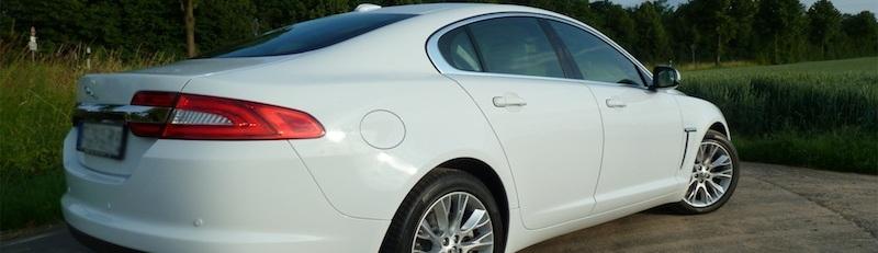 Jaguar XF in Polaris White, Foto: Autogefühl