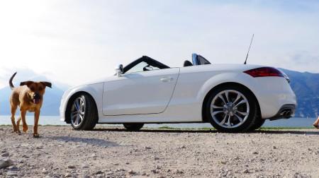Audi TTS Roadster am Gardasee, Foto: Autogefühl
