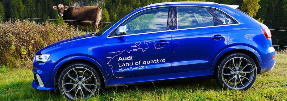 Audi RS Q3 mit Kuh3, Foto: Autogefühl